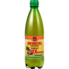 concentrat de KOMBUCHA + C  500ml